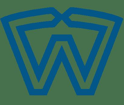 wealthserv icon